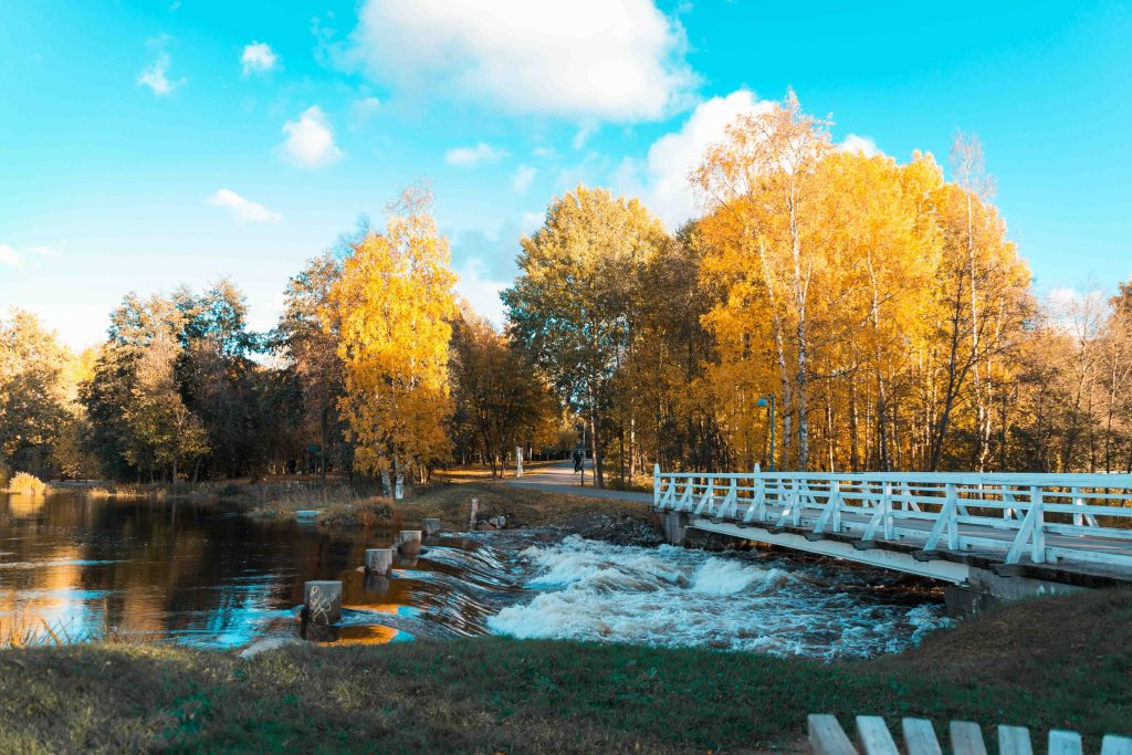 Ainolan puisto Oulu kuljetus